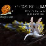 ContestLumacai2016
